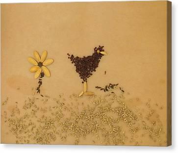 Happy Chicken Canvas Print by Jon Simmons
