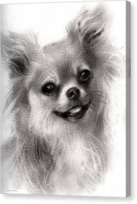 Happy Chihuahua Dog Portrait Canvas Print