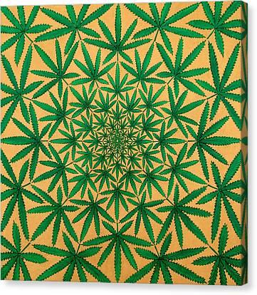 Happy Daze Canvas Print by Larry Smart