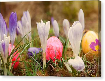 Canvas Print featuring the photograph Happy Easter 2 by Christine Sponchia