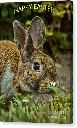 Happy Easter Canvas Print by Anne Rodkin