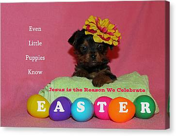 Canvas Print featuring the photograph Happy Easter by Lorna Rogers Photography