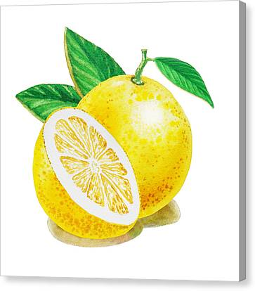 Happy Grapefruit- Irina Sztukowski Canvas Print by Irina Sztukowski
