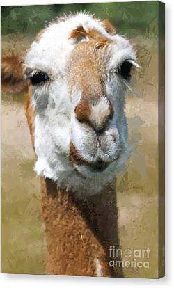 Happy Lama Painting Effect Canvas Print by Design Windmill