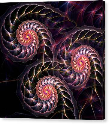 Happy Lights Canvas Print by Anastasiya Malakhova