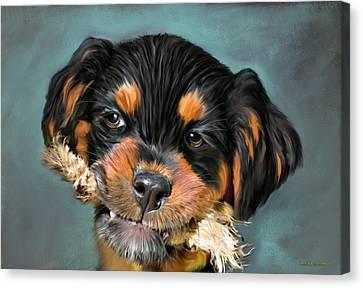 Happy Puppy Canvas Print by Angela A Stanton