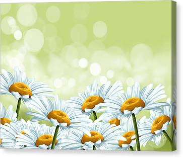 Happy Spring Canvas Print by Veronica Minozzi