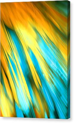 Happy Together Right Side Canvas Print by Dazzle Zazz