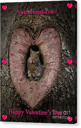 Happy Valentine Squirrels Canvas Print by D Wallace