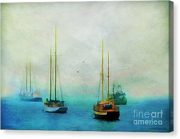 Harbor Fog Canvas Print by Darren Fisher