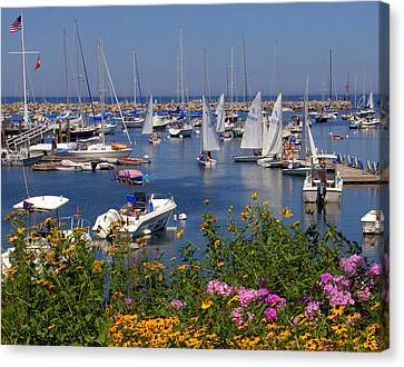 Canvas Print featuring the photograph Harbor In Bloom by Caroline Stella