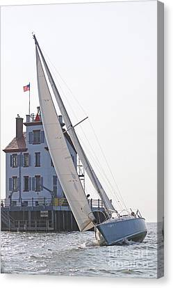 Harbor Sailing Two Canvas Print