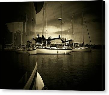 Canvas Print featuring the photograph Harbour Life by Micki Findlay