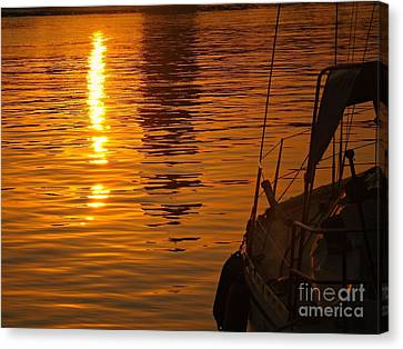 Harbour Sunset Canvas Print by Clare Bevan