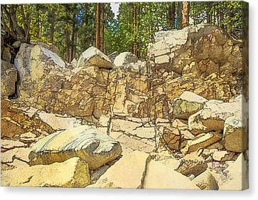 Hard Rock Forest Canvas Print