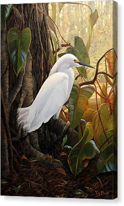 Hard To Hide Canvas Print by Tim Davis