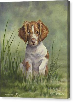Spaniel Puppy Canvas Print - Hardwired by Linda Shantz