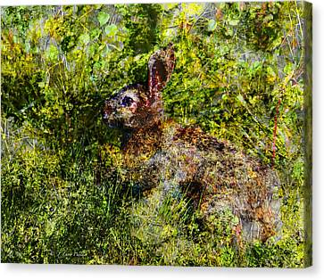 Canvas Print featuring the digital art Hare In Hiding by J Larry Walker
