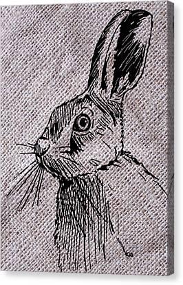 Hare On Burlap Canvas Print