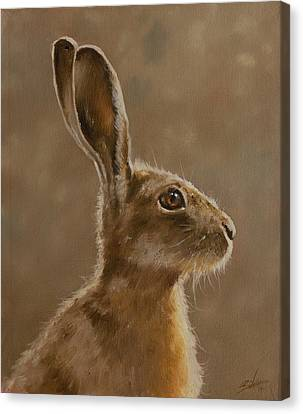 Hare Portrait I Canvas Print by John Silver