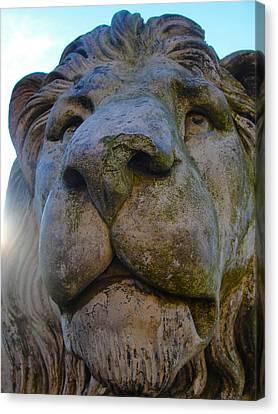 Harlaxton Lions Canvas Print