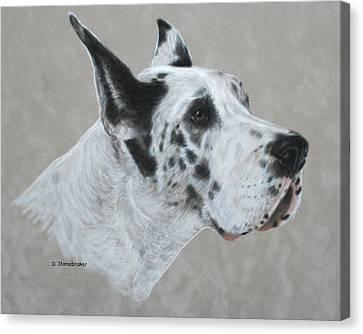 Harlequin Dane Canvas Print by Debbie Stonebraker