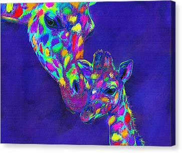 Harlequin Giraffes Canvas Print