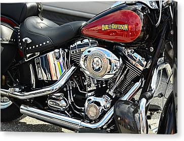 Harley Chrome Canvas Print by Laura Fasulo