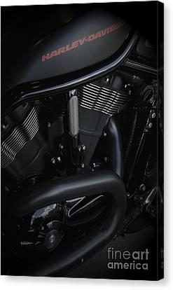 Harley Davidson Black Canvas Print by Vineesh Edakkara