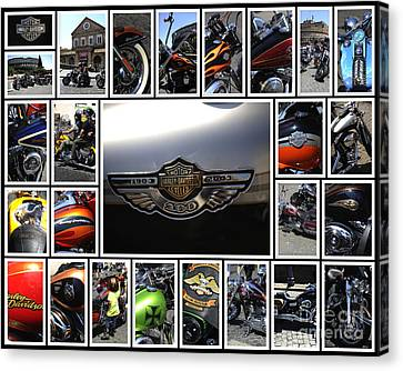 Two Wheeler Canvas Print - Harley Davidson Motorcycles by Stefano Senise