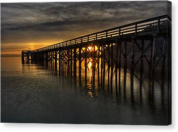 Harmonious Illumination  Canvas Print by Mark Kiver