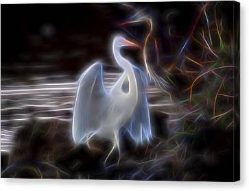 Harmony 2 Canvas Print by William Horden