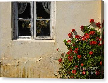 Canvas Print featuring the photograph Flower Talk by Terry Garvin