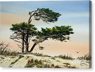 Harmony Of Nature Canvas Print by James Williamson