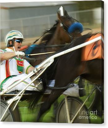 Harness Racing 3 Canvas Print by Bob Christopher