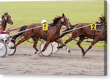 Harness Racing Canvas Print by Michelle Wrighton