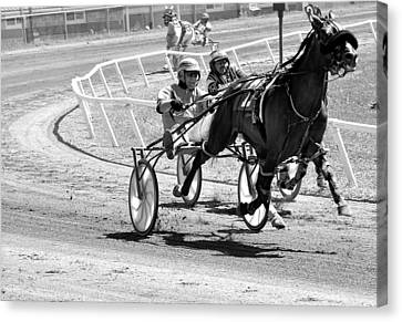 Harness Racing Canvas Print by Todd Hostetter