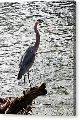 Haron Over The Water Canvas Print by Adam LeCroy