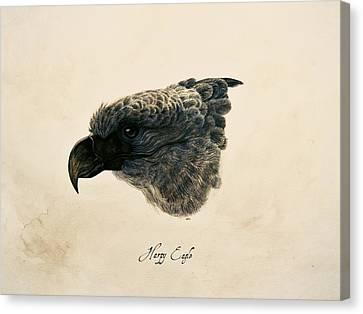 Harpy Eagle Canvas Print - Harpy Eagle by Rachel Root