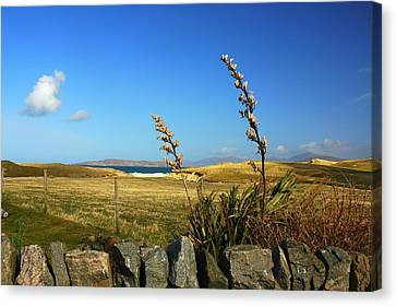 Harris Outer Hebrides Canvas Print by The Creative Minds Art and Photography