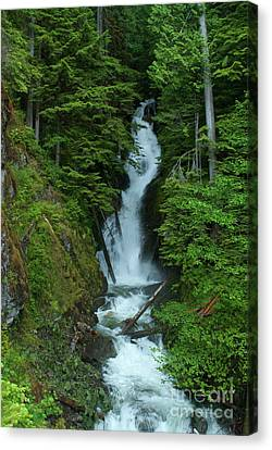 Canvas Print featuring the photograph Harrison Lake Road Falls by Rod Wiens