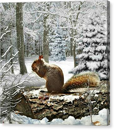 Harry In Winter 2 Canvas Print by Morag Bates