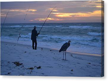 Harry The Heron Fishing With Fisherman On Navarre Beach At Sunrise Canvas Print by Jeff at JSJ Photography