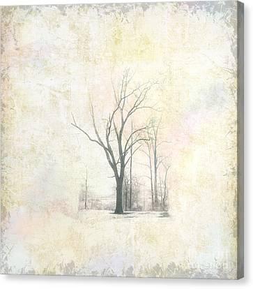 Bare Trees Canvas Print - Harsh I by Pamela Baker