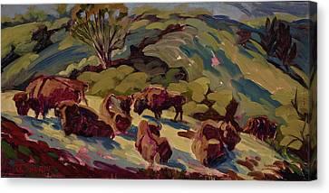 Hart Ranch Buffalo Canvas Print by Jane Thorpe
