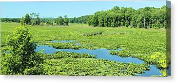 Canvas Print featuring the photograph Hartstown Marsh Panorama by Dennis Lundell