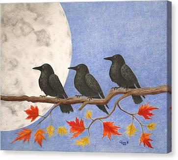 Harvest Crows Canvas Print by Alyssa Glosson