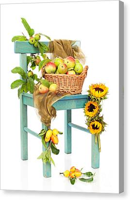 Harvest Fayre Canvas Print by Amanda Elwell