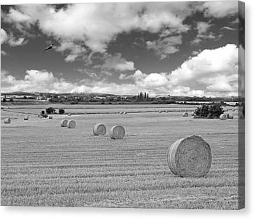 Harvest Fly Past In Black And White Canvas Print