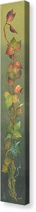 Harvest Grapevine Canvas Print
